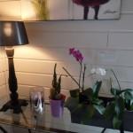 decoration_interieure (22)